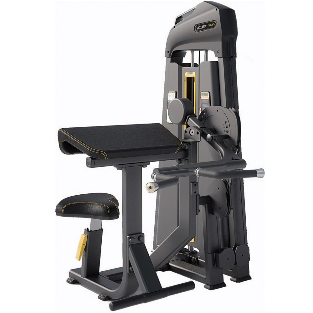 Camber Curl / Tricep Extension Fitness Equipments / Gym Strength Machines