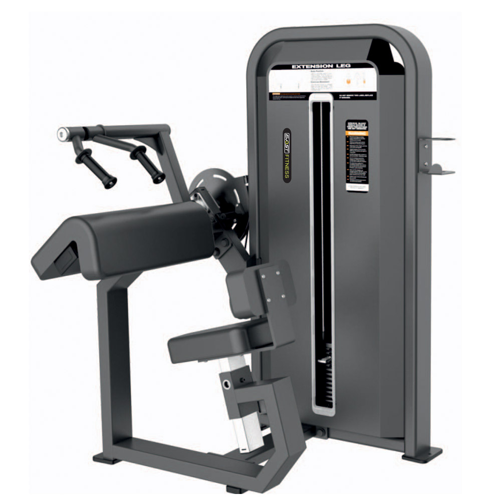 Tricep Extension Fitness Equipments / Gym Strength Machines
