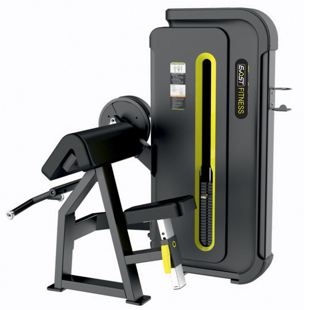 Camber Curl Fitness Equipments / Gym Strength Machines