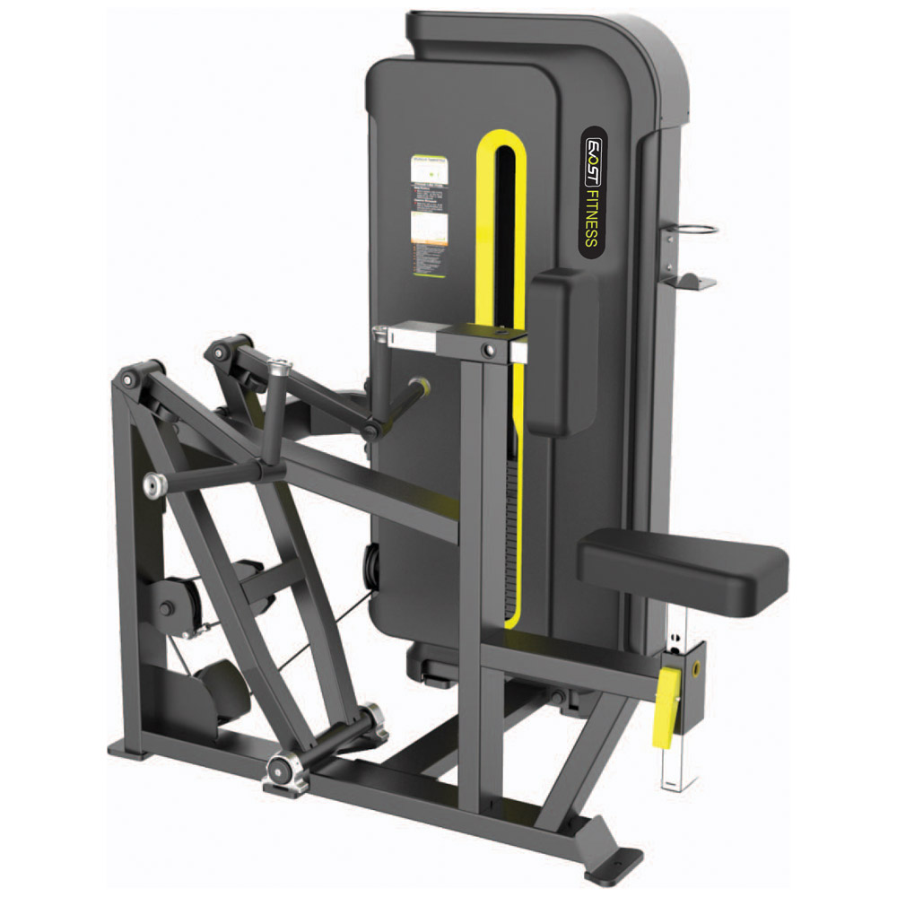 Verticle Row / Rear Delt Fitness Equipments / Gym Strength Machines