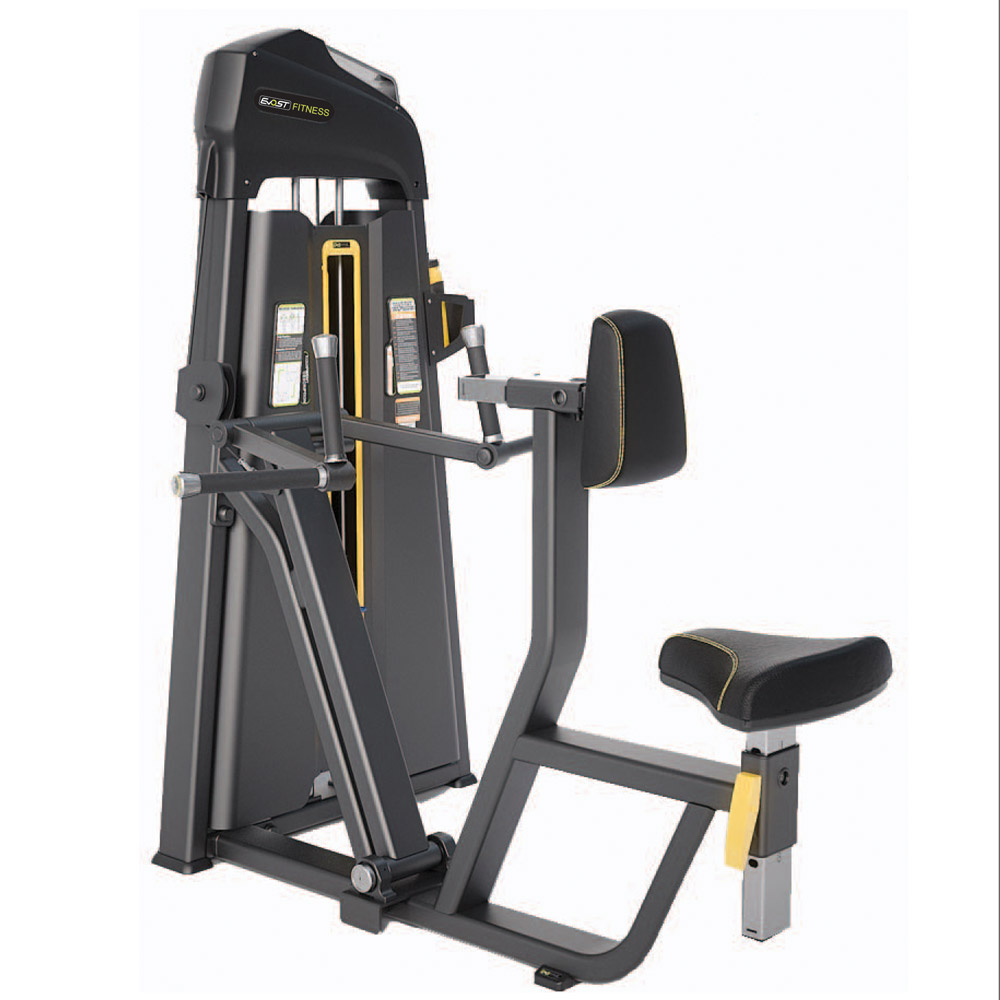 Vertical Row / Rear Delt Fitness Equipments / Gym Strength Machines