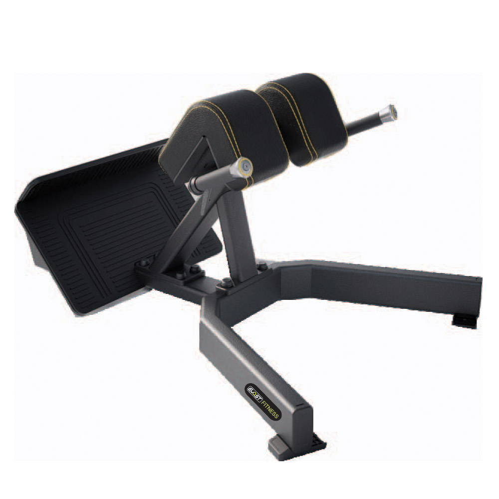 Back Extension Fitness Equipments / Gym Strength Machines