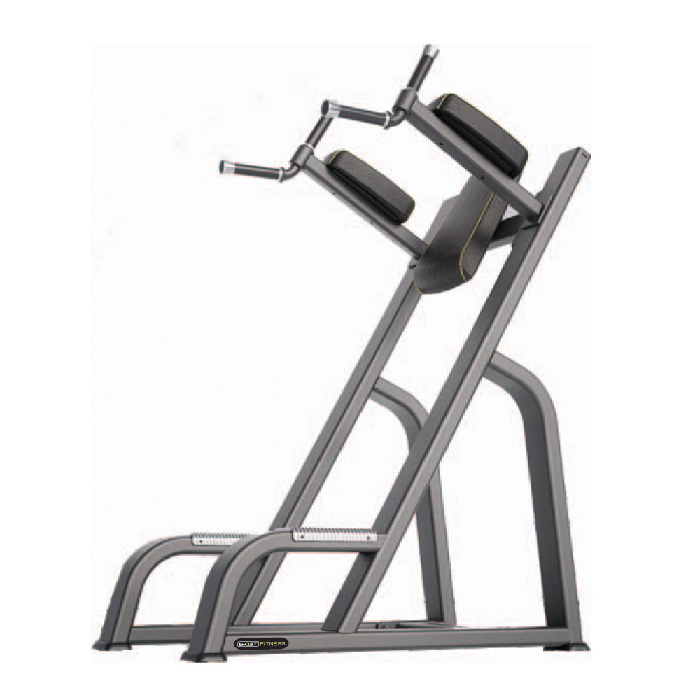 Vertical Knees Up/Dip Fitness Equipments / Gym Strength Machines